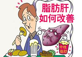 脂肪肝如何改善