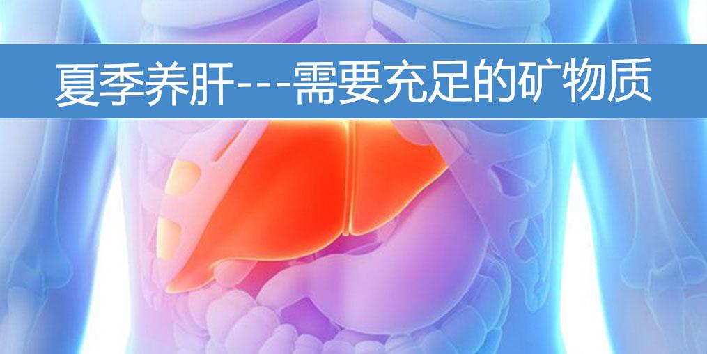 夏季养肝需要充足的矿物质,保护肝功能
