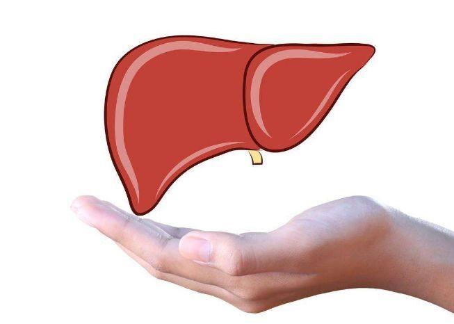 补硒铸就肝脏四大防线,养肝护肝,快来补硒吧