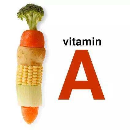维生素A它在机体中是怎么运作的